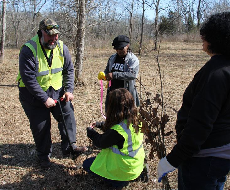 Volunteers Plant Trees in the Park