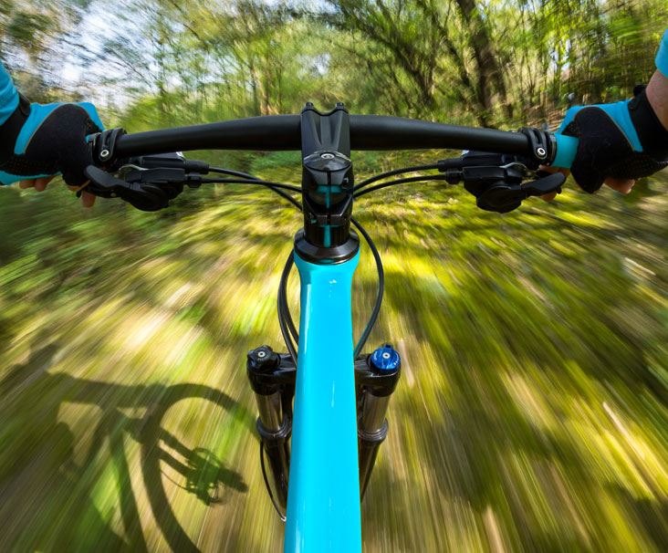 mountain bike handlebars in forest