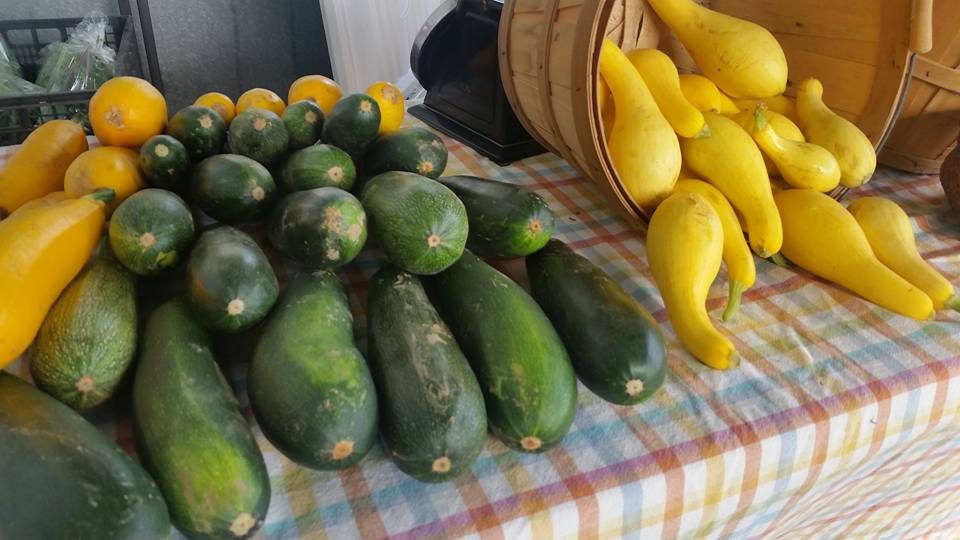 green and yellow squash at Farmers Market