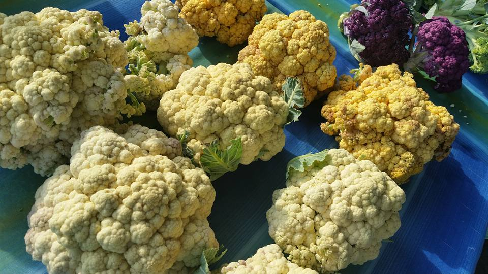 orange cauliflower  at Farmers Market