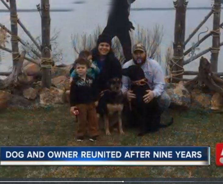 Family reunited with dog after nine years