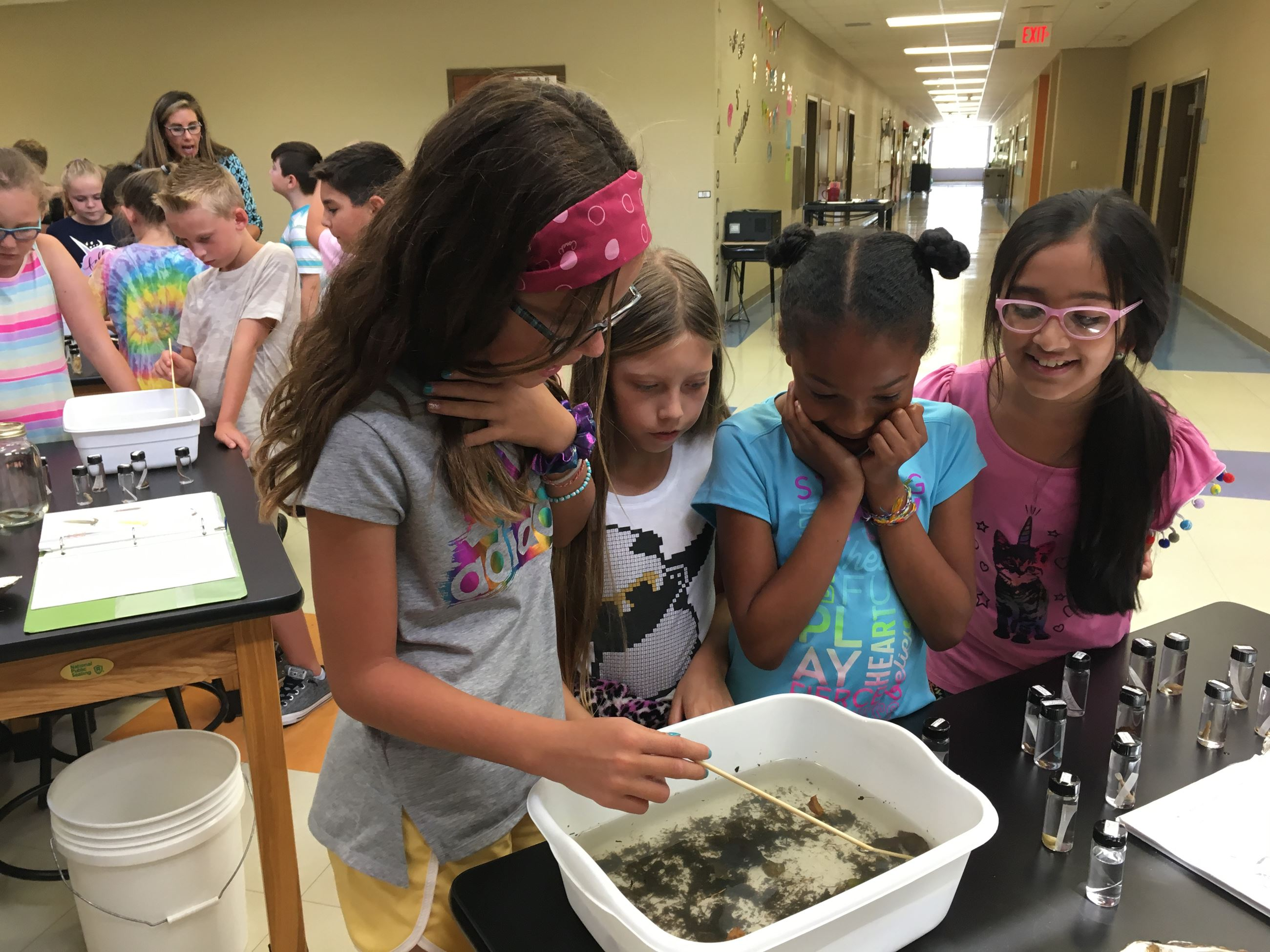 2019-8-20 Station Camp Elementary Creek Critters 14