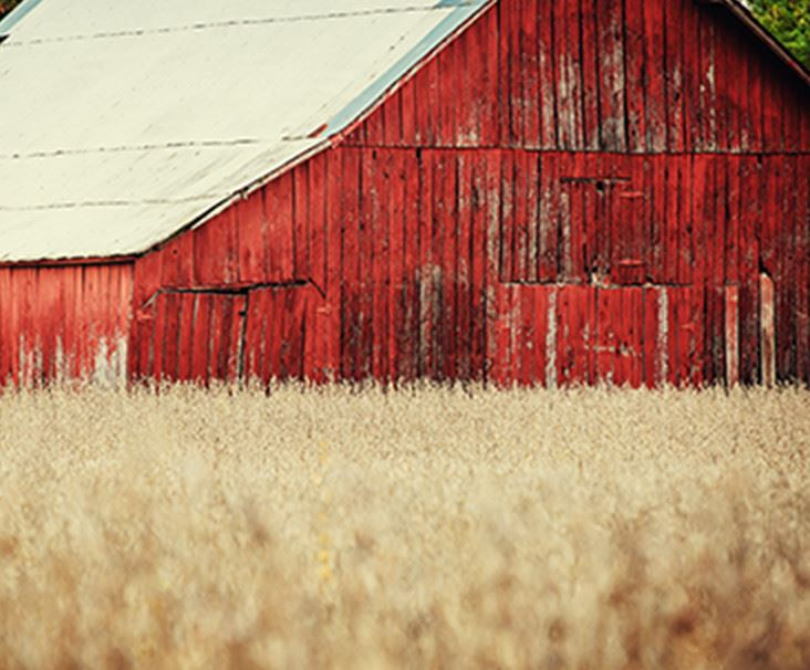 Red Barn in Gallatin